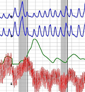 expert polygraph test in Los Angeles